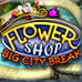 Flower Shop - Big City Break Game